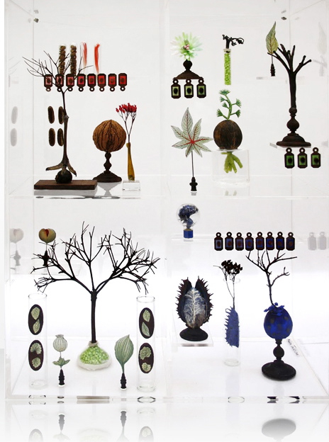 Maissa Toulets Curiosity Cabinets in main art  Category