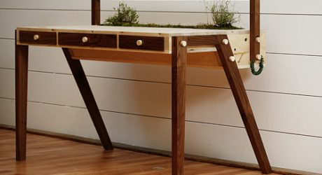 The Senescent Desk by Love Hultén