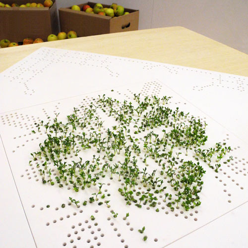 University of Gothenburg, Stenby Craft and Design Grow Sprout Table Lena Louisa Meyer