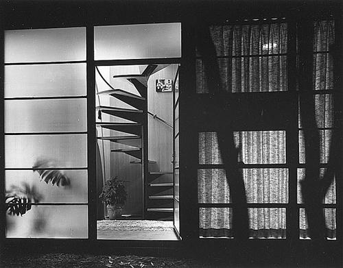 PlantShadows_Eames