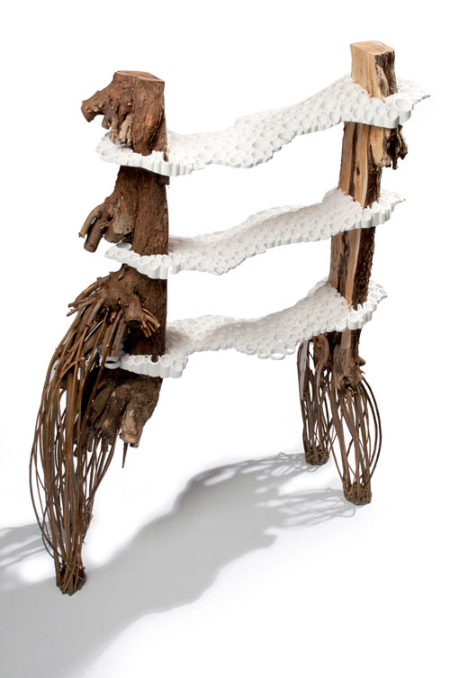 Tree Fungus by Floris Wubben in main home furnishings  Category