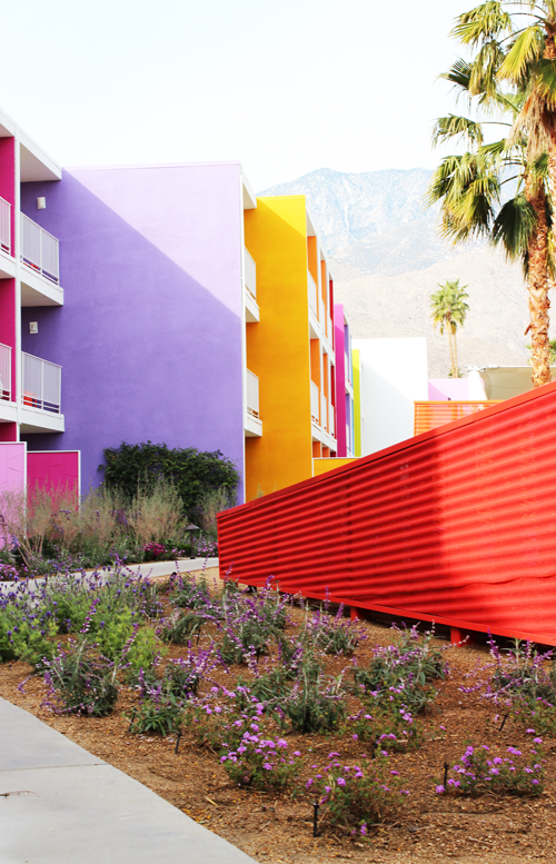 MilkWeed: Color Fields   The Landscape Of The Saguaro Palm Springs   Design  Milk