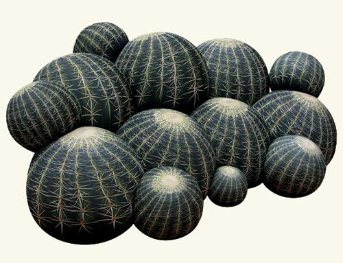 Cactus Seating by Maurizio Galante