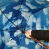 store-moma-umbrella