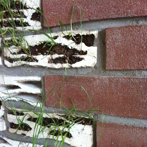 Brick Biotopes at Milan Design Week
