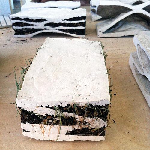 Brick Biotope Micaela Nardella and Oana Tudose