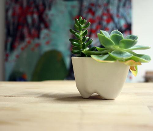 earthnform Porcelain