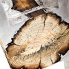 Hilla-Shamia-Wood-Casting-11