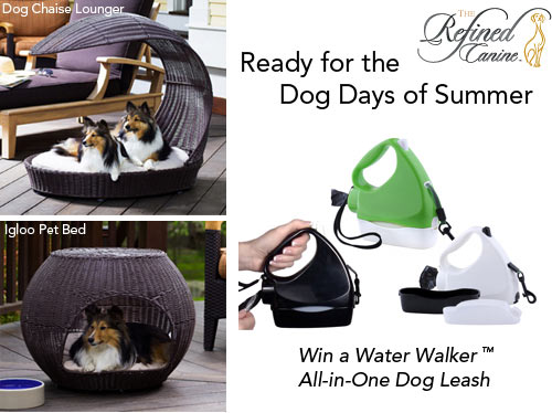 The Refined Canine Giveaway on Design Milk in other