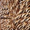 AnneCrumpacker.image2