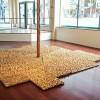 AnneCrumpacker.image3