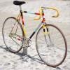 Biascagne-Guasco-Bike-2