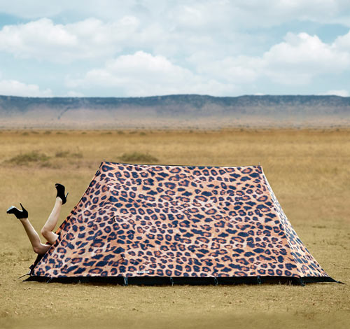 FieldCandy-8-Leopard