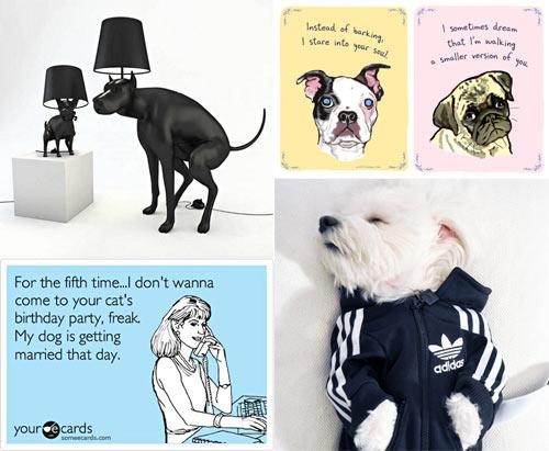 Dog Milk: Best of June 2012