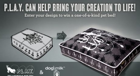 Design Your Own Pet Bed and Win It from P.L.A.Y.!