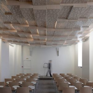 Press Conference Room by h2o architectes