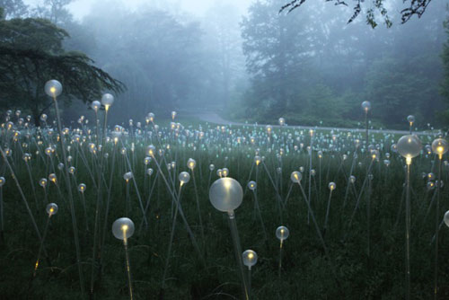 Light: Installations by Bruce Munro in main art  Category