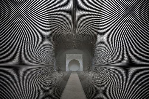 Tube by Zilvinas Kempinas