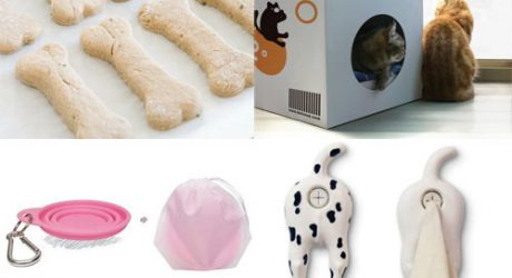 Dog Milk: Best of July 2012