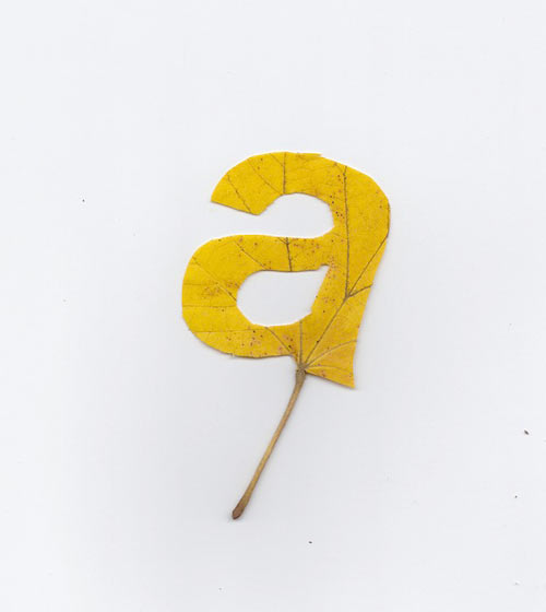 Falling Leaves Typography by Twan van Keulen in art  Category