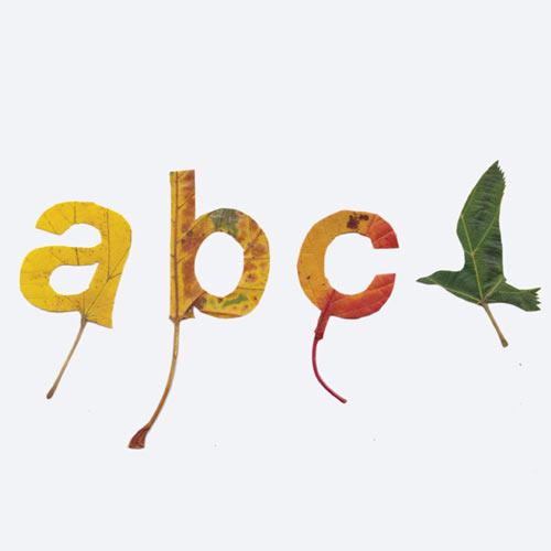 Falling Leaves Typography by Twan van Keulen