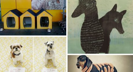 Dog Milk: Best of August 2012