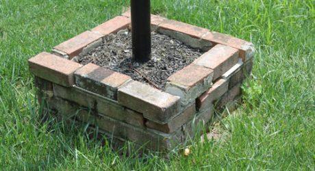 The Easiest DIY Concrete Planter Ever