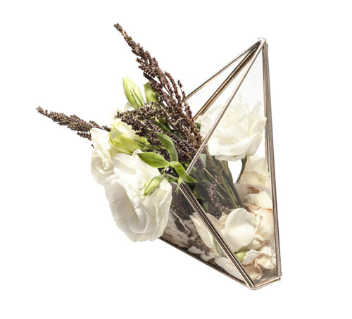 æther Geometric Glass and Metal Terrariums in main home furnishings  Category