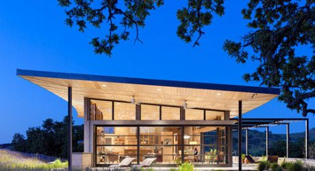 House Made from the Ground it Sits On by Feldman Architecture