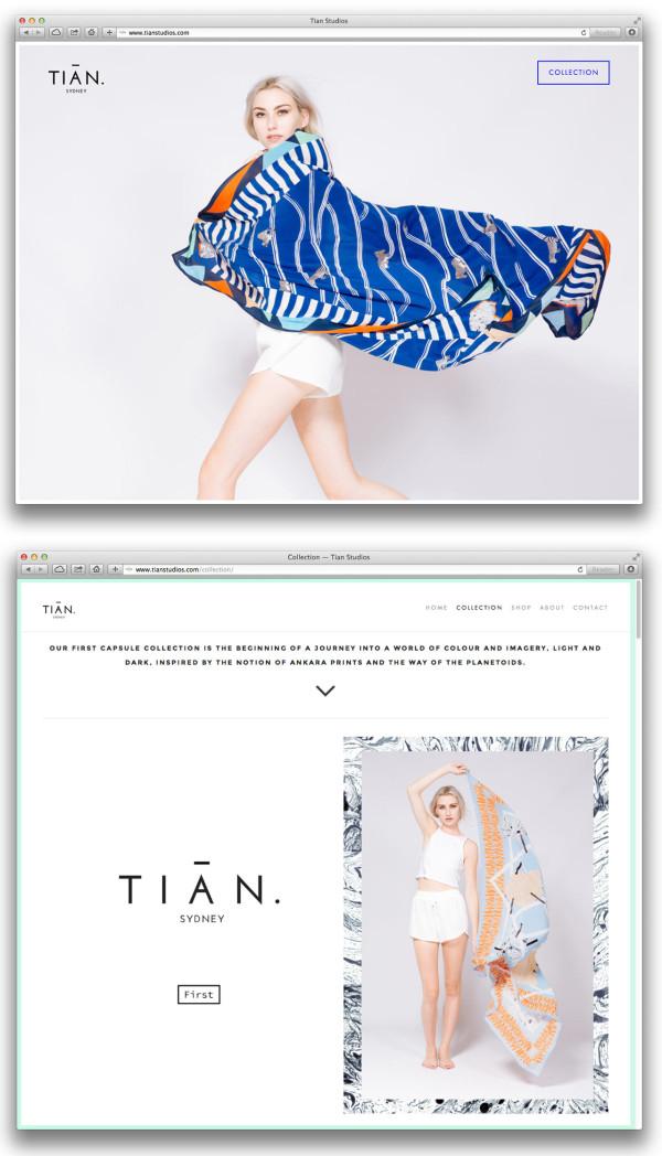 Collection_—_Tian_Studios