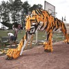 Hello-Wood-Tiger-3