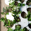 Green-Kit-7-Trifoglio