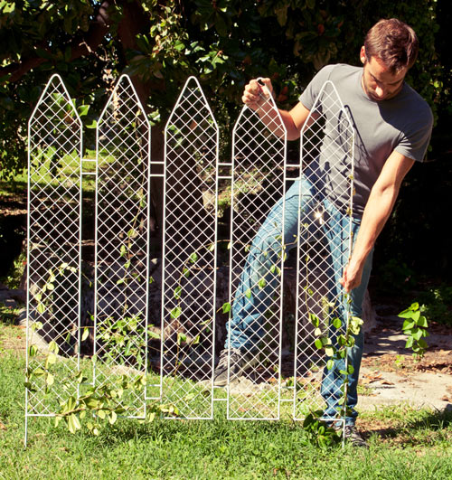 Plant The Fence by Andrea Rekalidis Design in home furnishings  Category