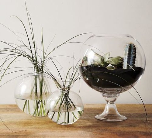 ShanePowers_WestElm_FishBowls