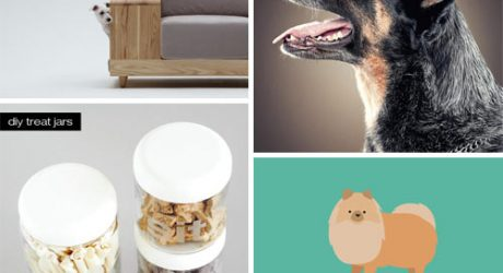 Dog Milk: Best of October 2012