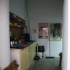 freeman lowe installation 4