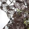 h2o-architectes_Tumbleweed-06