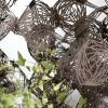 h2o-architectes_Tumbleweed-13