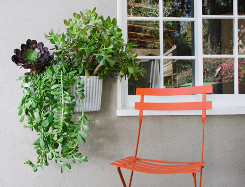 Living Wall Planter by Woolly Pocket