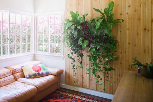 Living Wall Planter by Woolly Pocket in main home furnishings  Category