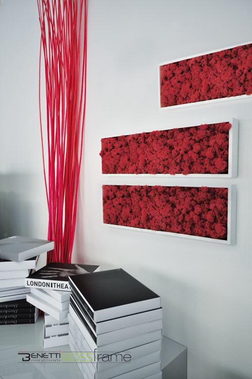 Clever Wall Planter Idea: MOSSframe by Benetti Stone in home furnishings art  Category