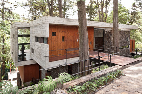 A House Built Around The Trees: Casa Corallo by Paz Arquitectura