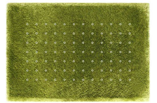 Daisy Garden Rug by Joe Jin