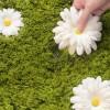 daisy-garden-rug-2