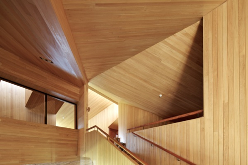 dest-refugia-wood-ceilings