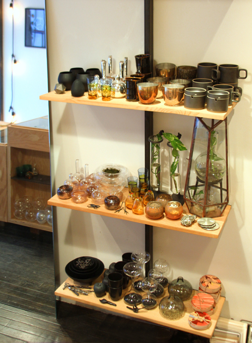 storey-still-house-shelves-with-plant-cuttings