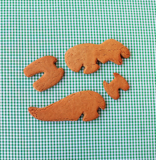 3D-Dino-Cookie-Cutters-7-TRex
