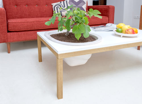 Lagune Is A Simple Coffee Table With Legs, Complete With A Lacquered Or  Wood Top And Removable Enameled Ceramic Planter For Easy Cleaning.