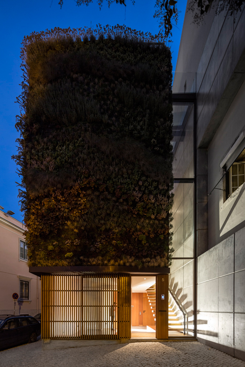 A Plant Covered Home: House Patrocinio by Rebelo de Andrade in main architecture  Category