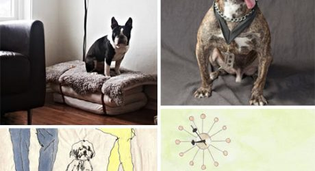 Dog Milk: Best of January 2013